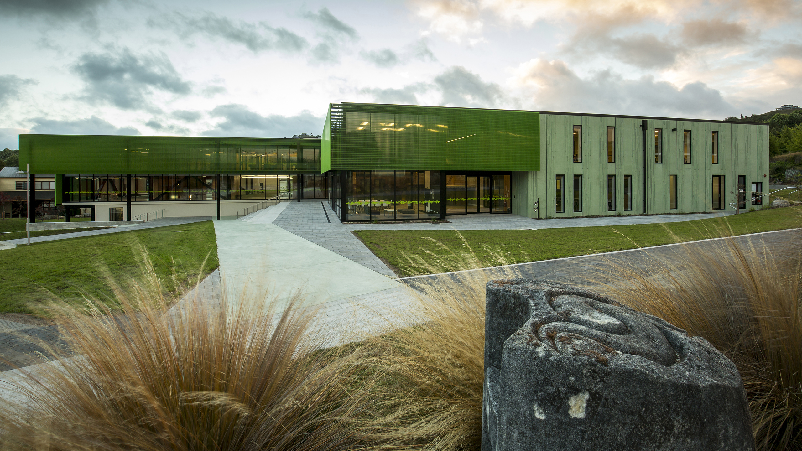 Green coloured concrete walls of Waiariki Nursing Building